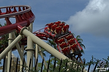 Hollywood Rip, Ride, Rockit